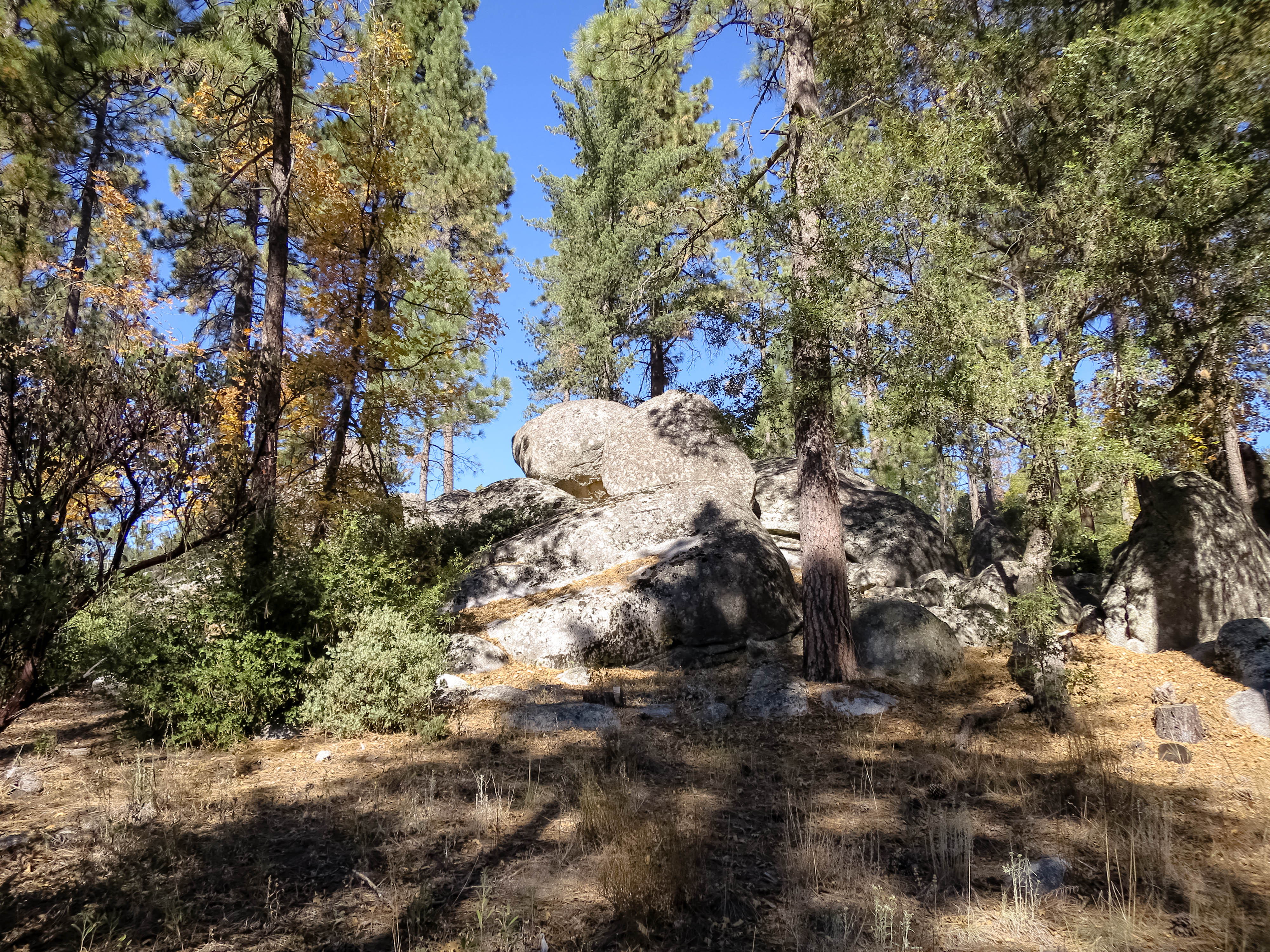 Idyllwild Mountain Biking