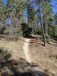 Mountain Biking in Idyllwild