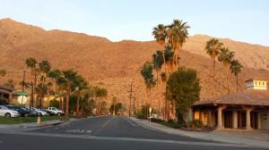 biking palm Palm Springs
